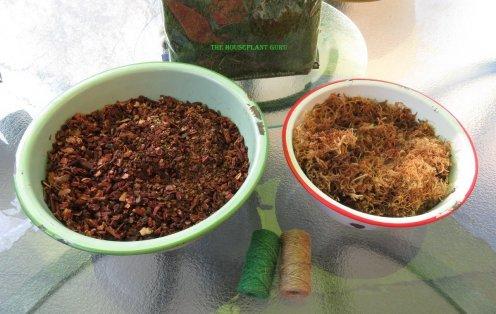 Bonsai soil and moss pre soaking