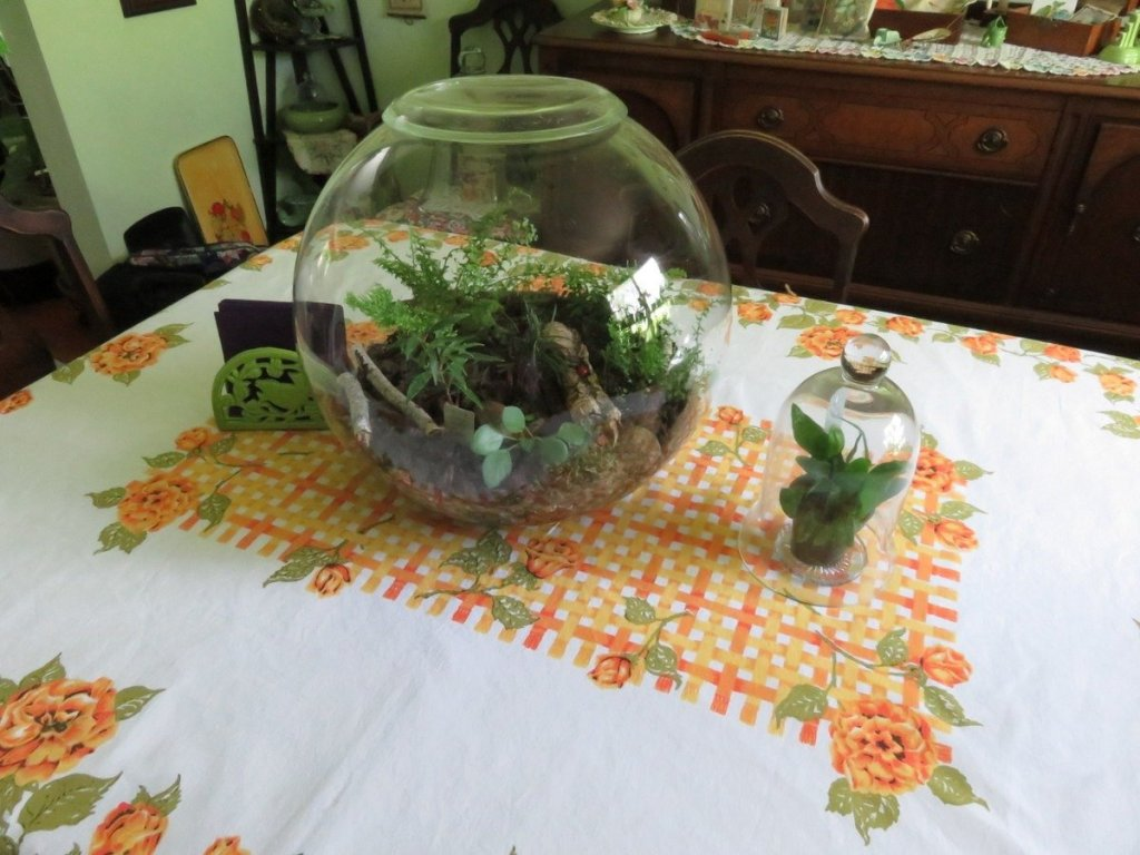My Planty Table #UrbanJungleBloggers
