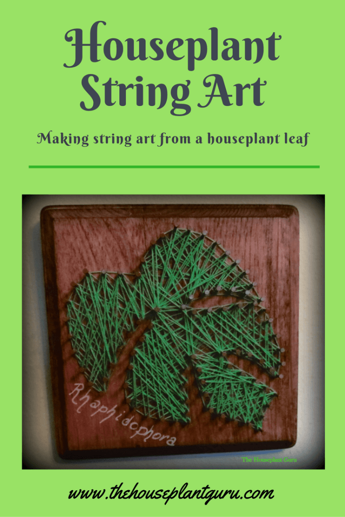 Houseplant String Art