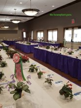Show tables