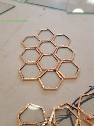 These hexagon pieces make the curved top of a terrarium