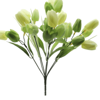 Green Tulip Bush by Ashland®