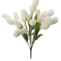 Cream Tulip Bush by Ashland®