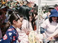 COURTESY DONELLA SMITH Sakura Matsuri draws thousands to its street festival attempting to display Japanese culture. While it is the biggest Japanese cultural events of its type, only around a tenth of visitors are of Japanese origin.