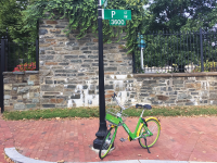 SARAH WRIGHT/THE HOYA Four companies, including Spin, LimeBike and JUMP, have rolled out a dockless bike-share program in the District, in competition with D.C.'s Capital Bikeshare program.