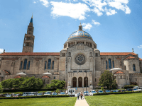 The Catholic University of America is one prominent Catholic institution which has denounced former Cardinal Theodore McCarrick by revoking his degrees. Georgetown has yet to issue a public response.