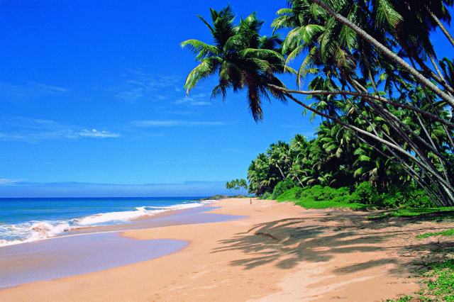 Goa is famous for its amazing beachlines