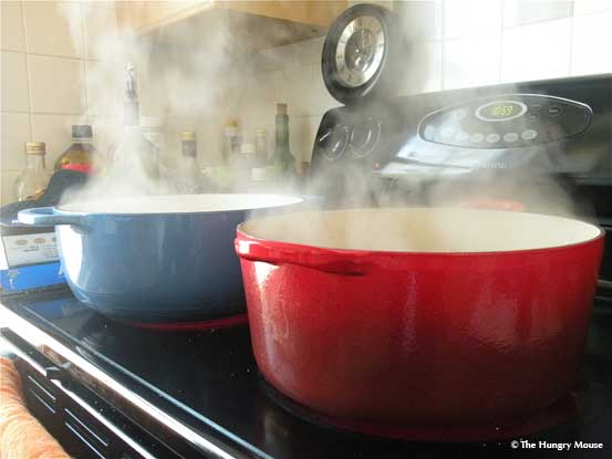 Dutch Oven Battle: Lodge vs  Le Creuset | The Hungry Mouse