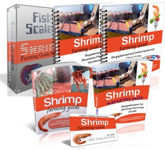 "How do you run a successful shrimp farming business? The ""Shrimp Farming Guide"" will teach you everything you need to know for running a successful shrimp farm."