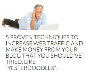 "5 proven techniques to increase Web traffic and make money from your blog that you should've tried, like ""yesterdoodles""!"