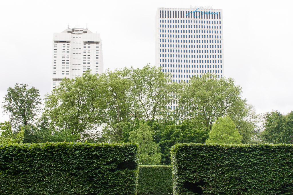 museumpark in Rotterdam, parks in Rotterdam