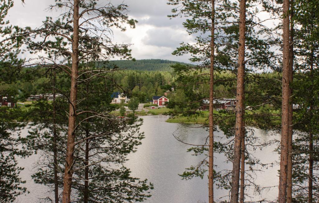 Grano Beckasin, Sweden Lapland, Northern Sweden, Granö