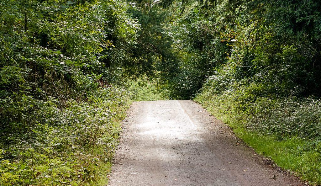 Killarney National Park Walks and walking trails