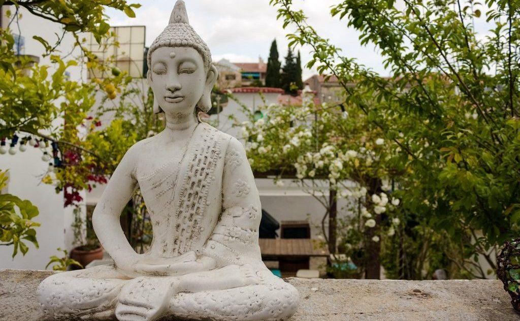 affordable meditation retreats - Salty Pelican Yoga Surf Hostel
