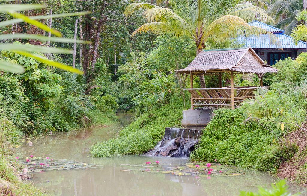 yoga retreats in koh phangan