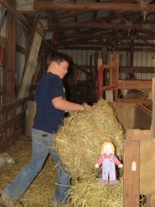 Blake, Aggie & hay