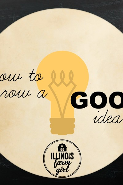 How to Borrow a Good Idea
