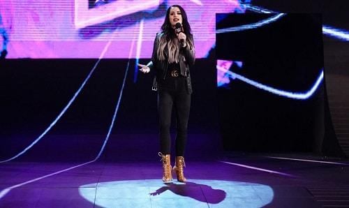WWE Superstars Paige Twitch