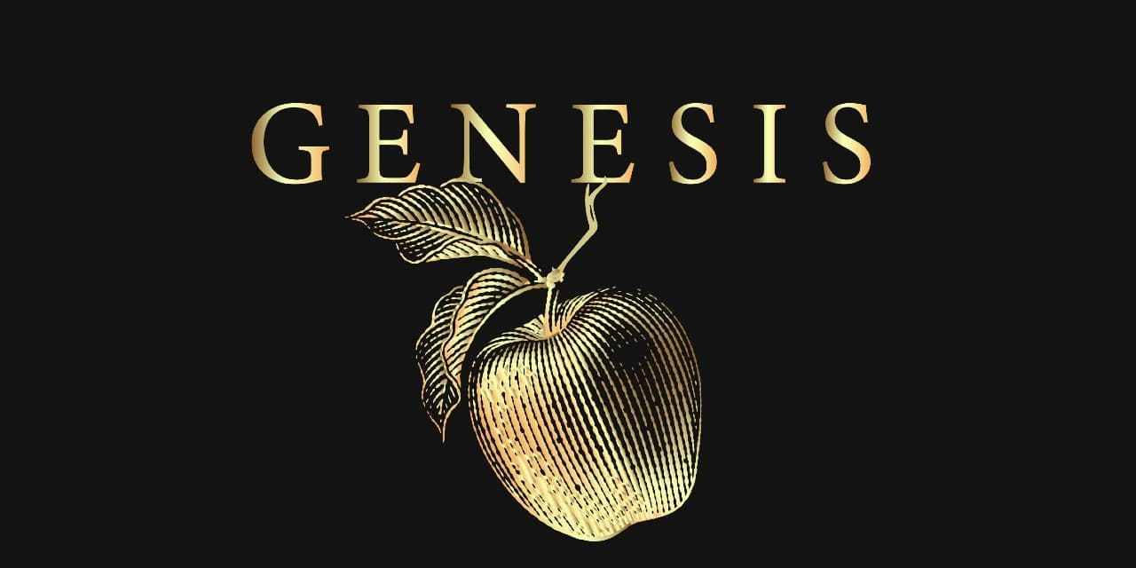 Genesis Theory Review: A Morbidly Gorgeous Short Story