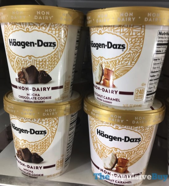 Haagen Dazs Non Dairy Mocha Chocolate Cookie and Coconut Caramel