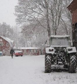 Life on a Swedish Farm