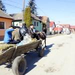 Horse drawn wagon? Romania
