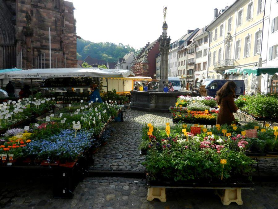 Market, Minster, Freiburg, Germany