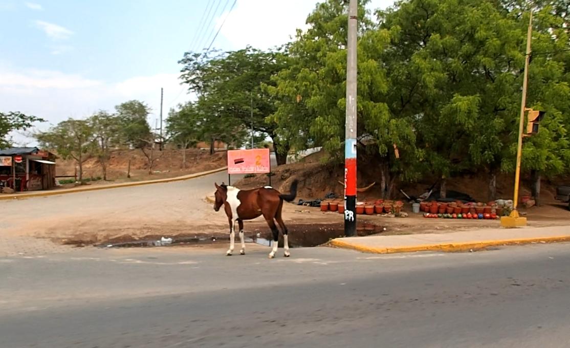 Nicaraguan Roads