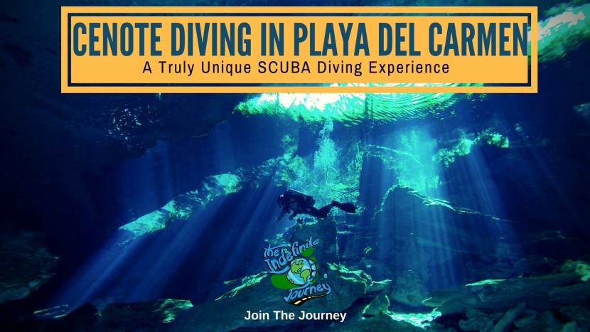Cenote Diving In Playa Del Carmen - A Truly Unique SCUBA Diving Experience