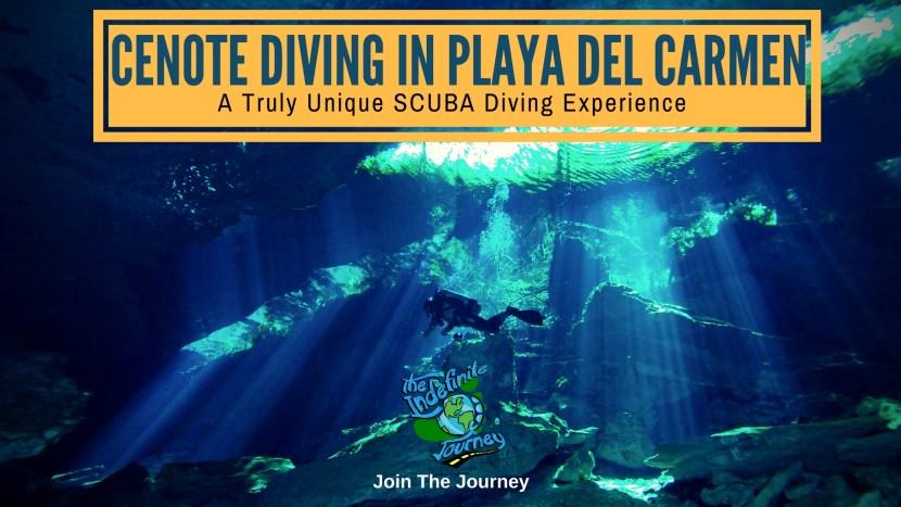 Cenote Diving In Playa Del Carmen - A Truly Unique SCUBA Diving Experience