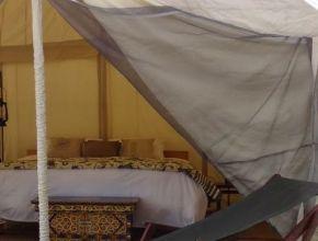 Luxe et écologie sous la tente