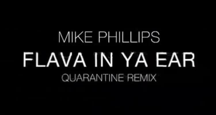 Mike Phillips- Flava In Ya Ear (Remix)