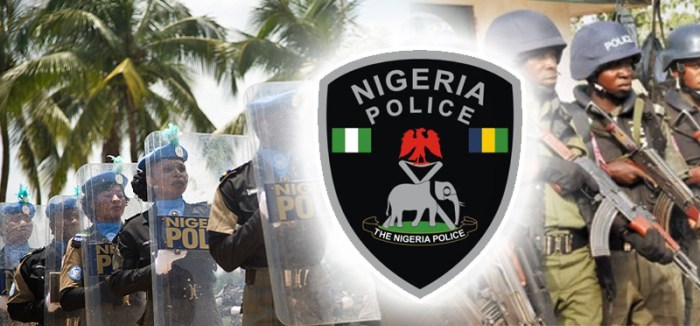 Nigerian police salary scales for all ranks