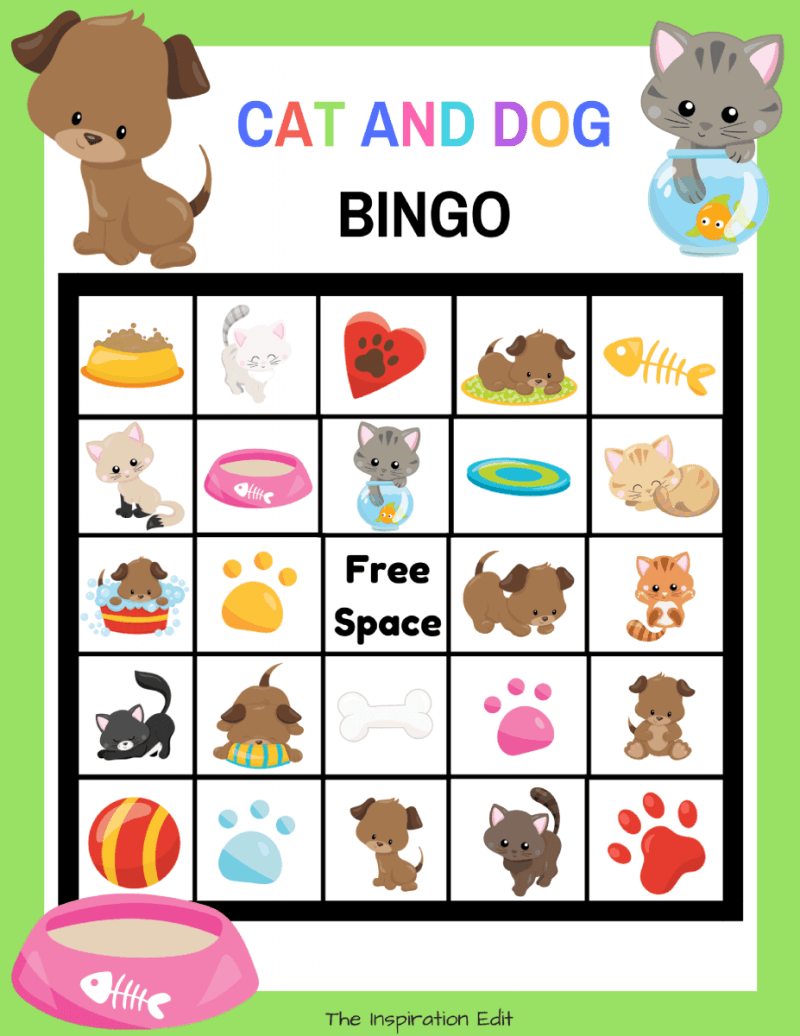 cats and dog bingo