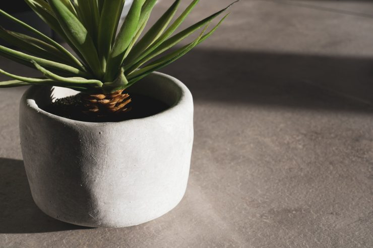 indoor plant grow tent guide