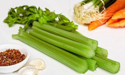Is It Better to Juice or Blend Celery