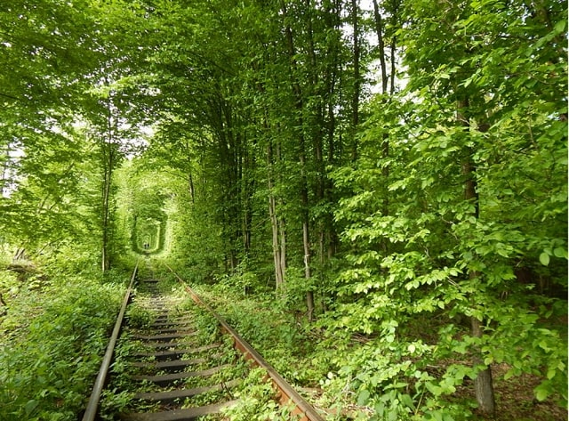 6 of the Most Inspiring Places on Earth - Tunnel of Love - Ukraine