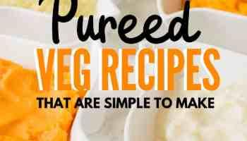 instant pot pureed veg