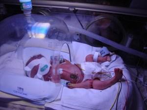 Cara just born