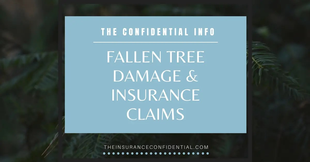 The Confidential Info: Fallen Tree Damage & Insurance Claims via @The_Insurance_Confidential