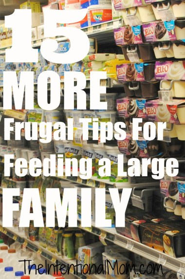 15 more frugal tips for feeding family