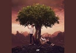 DTF – Lei Lei (English lyrics)