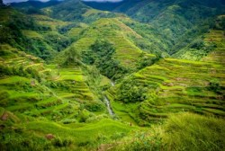 Rice Terraces of Banaue/ JC Fonte - https://angbalaysugidanun.files.wordpress.com/2013/08/dsc_0098.jpg]