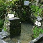 The Holy Well at Tobernalt - The Irish Place