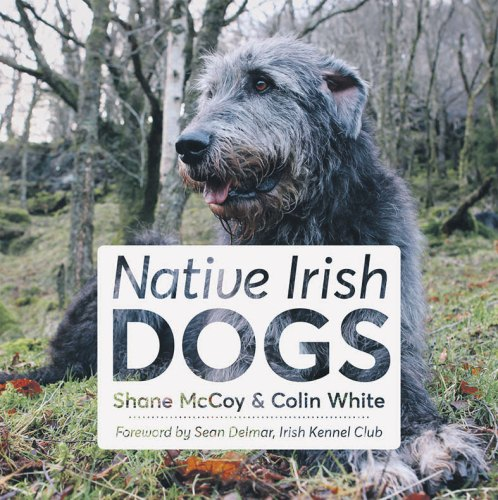 Book Review: Native Irish Dogs