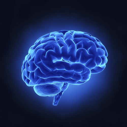 Schizophrenia associated widespread change brain's wiring nui Galway study