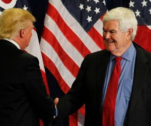 gingrich warns trump