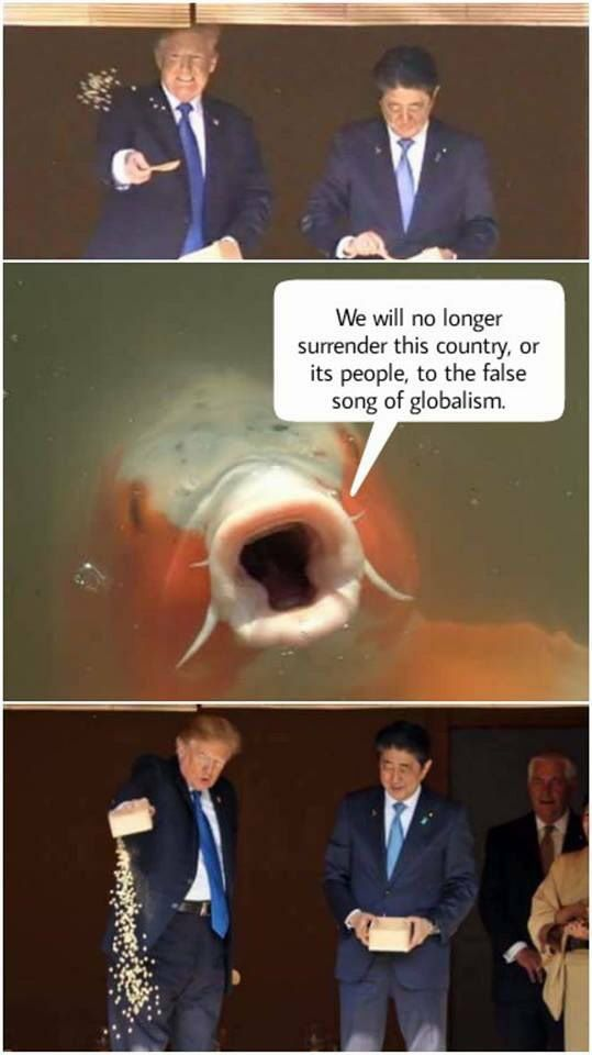trump feeds fish fake news