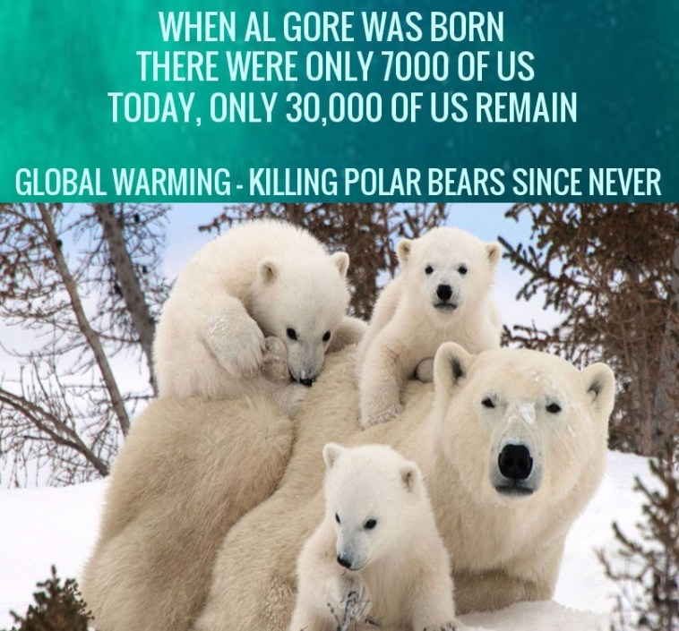 al gore cold wave is global warming