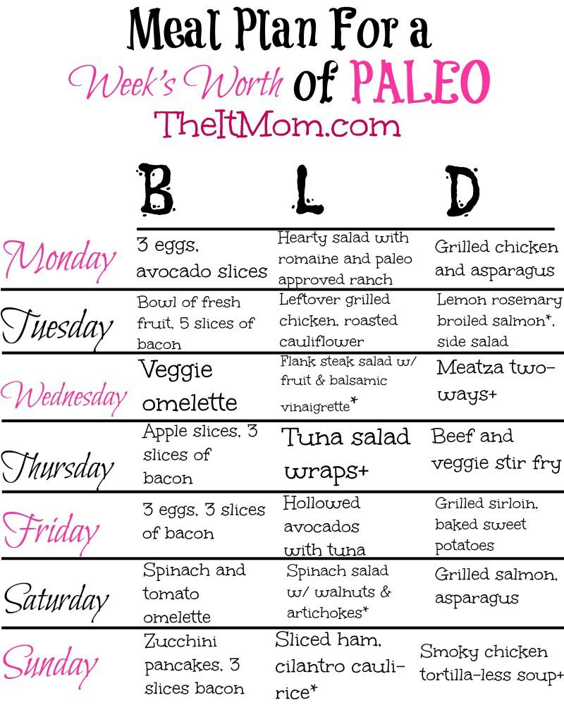 The Paleo Diet - A Beginner's Guide & Meal Plan | The It Mom